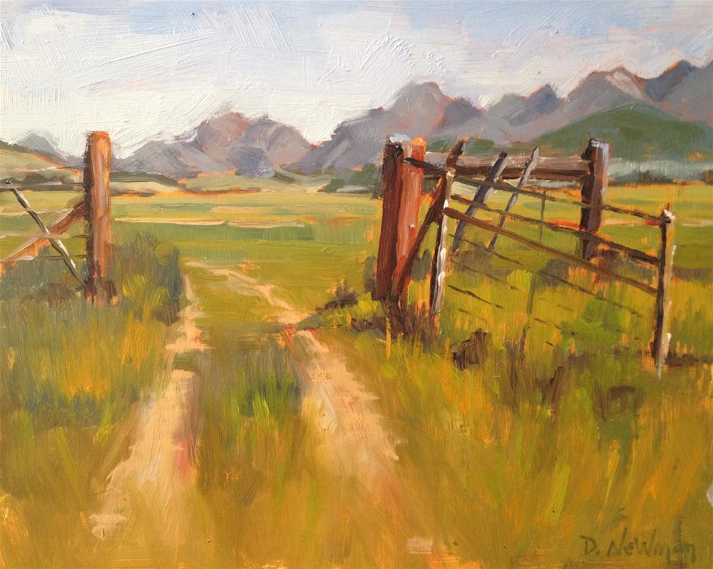 """Out on the Range"" original fine art by Deborah Newman"