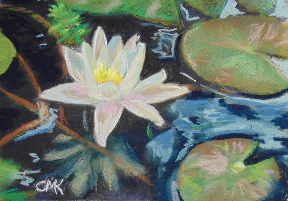 """Water Lily"" original fine art by Catherine Kauffman"
