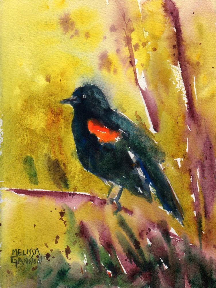 """Red-Wing Blackbird Perch"" original fine art by Melissa Gannon"