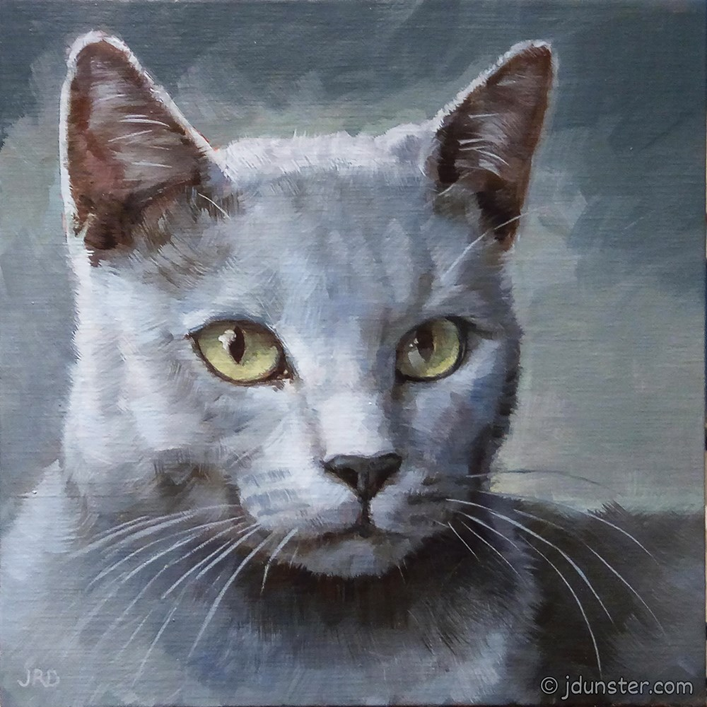 """Grey Kitty [STUDIO CLEARANCE]"" original fine art by J. Dunster"