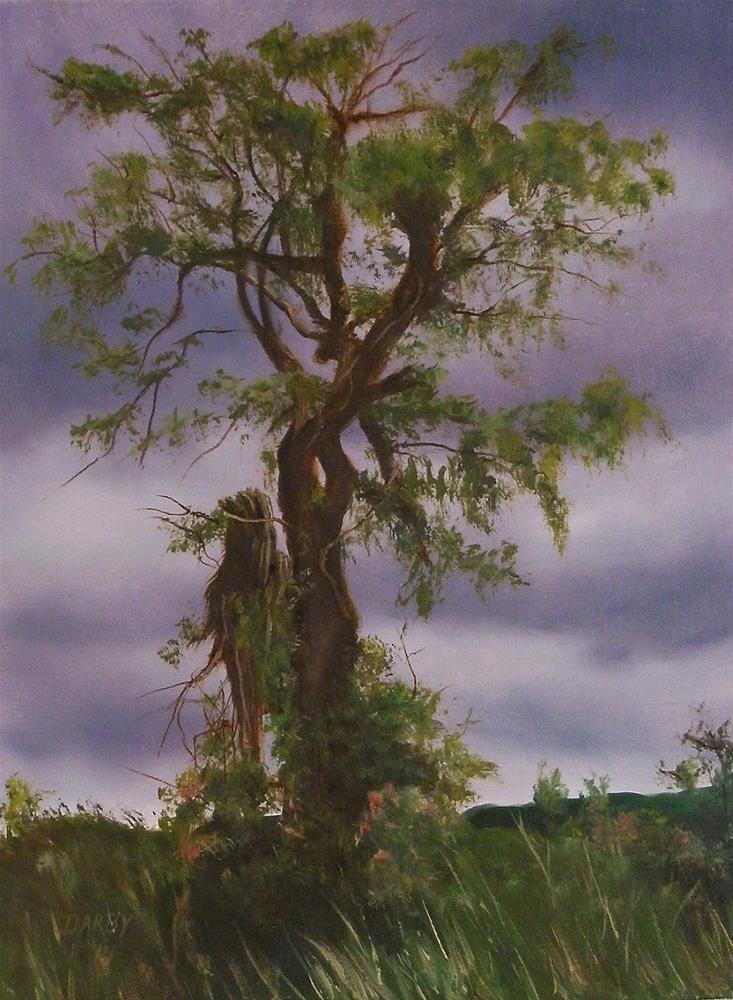 """""""Tree Study"""" original fine art by Lynn Darby"""