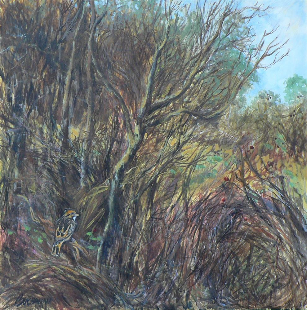 """""""Thicket and Sparrow"""" original fine art by Leigh Buchanan"""