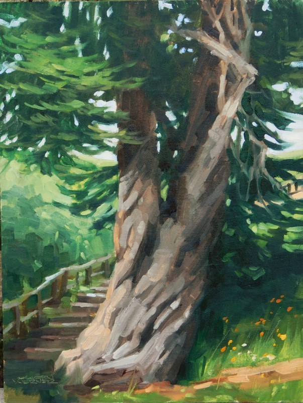 """Twisting Pine"" original fine art by Karen Werner"