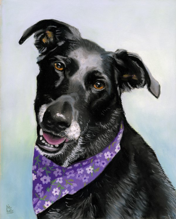 """commissioned dog portrait"" original fine art by Ria Hills"