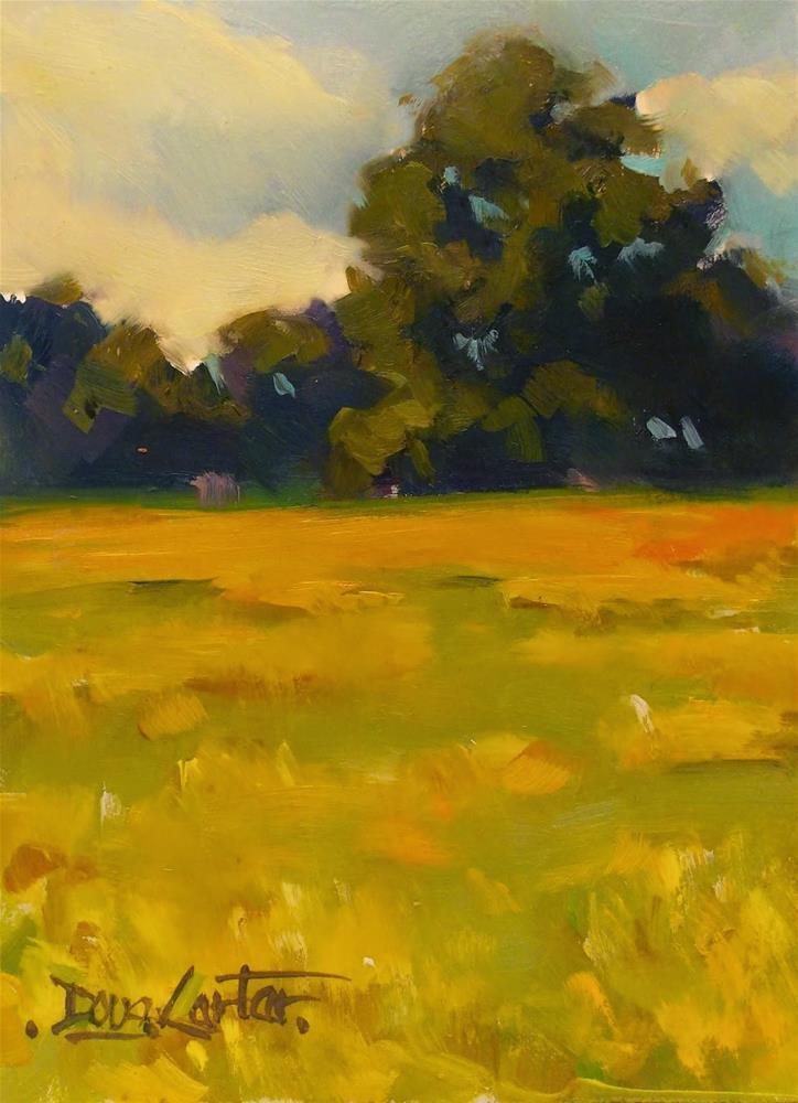 """""""GOLD SUMMER"""" original fine art by Doug Carter"""