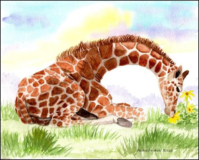 """The Curious Giraffe Calf"" original fine art by Patricia Ann Rizzo"
