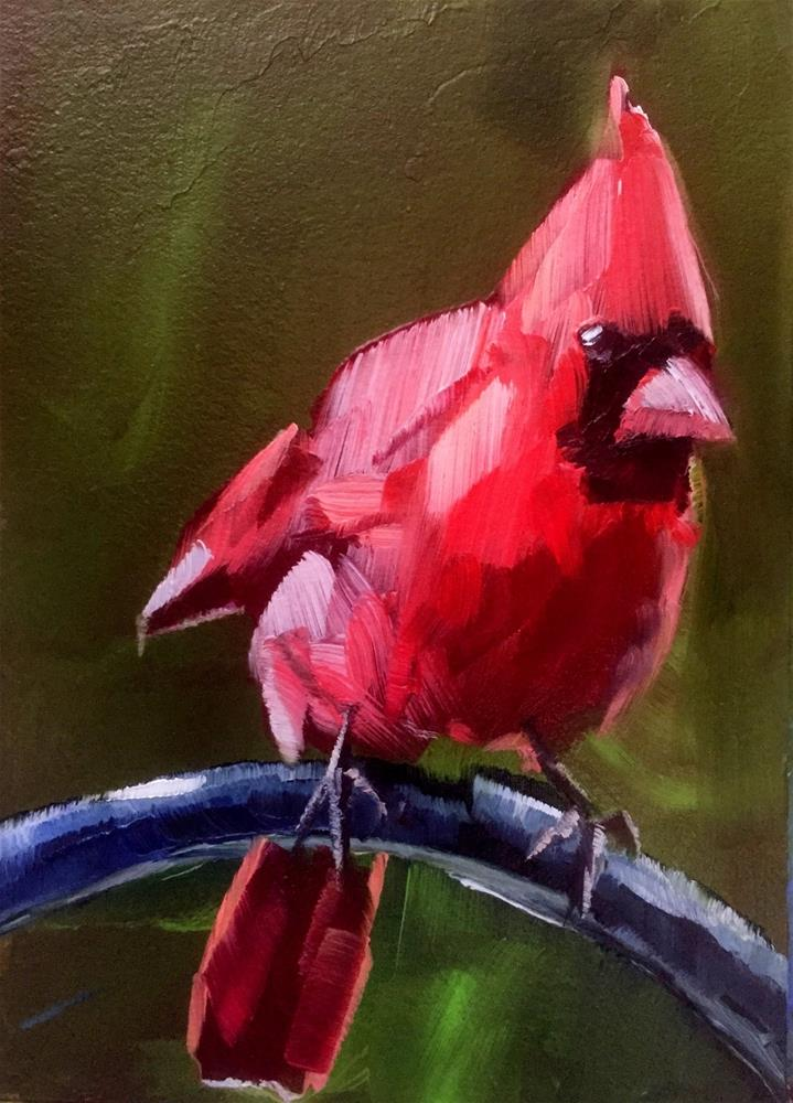 """Curious Cardinal"" original fine art by Gary Bruton"