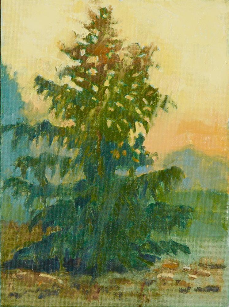 """Autumn Sunlight"" original fine art by Carol Granger"
