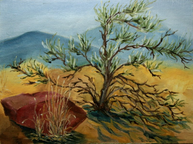 """""""High Desert Still Life - 3"""" original fine art by Jean Nelson"""