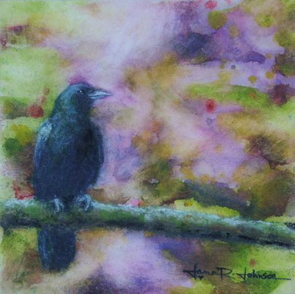 """Crow Contemplating"" original fine art by Jana Johnson"