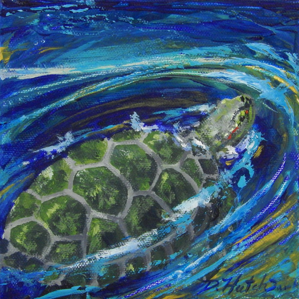 """Turtle #1"" original fine art by Diane Hutchinson"