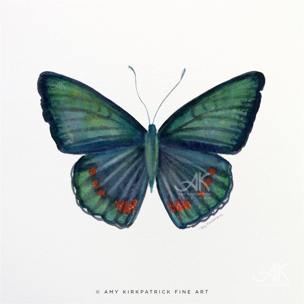 """""""#82 Bellona Butterfly #0392"""" original fine art by Amy Kirkpatrick"""