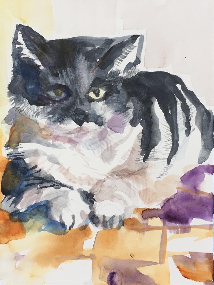 """Black and White House Cat"" original fine art by Jean Krueger"