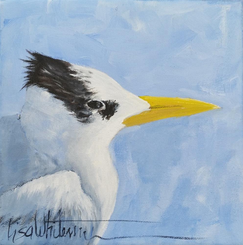 """90 - Tern for the better"" original fine art by Lisa Rogers"