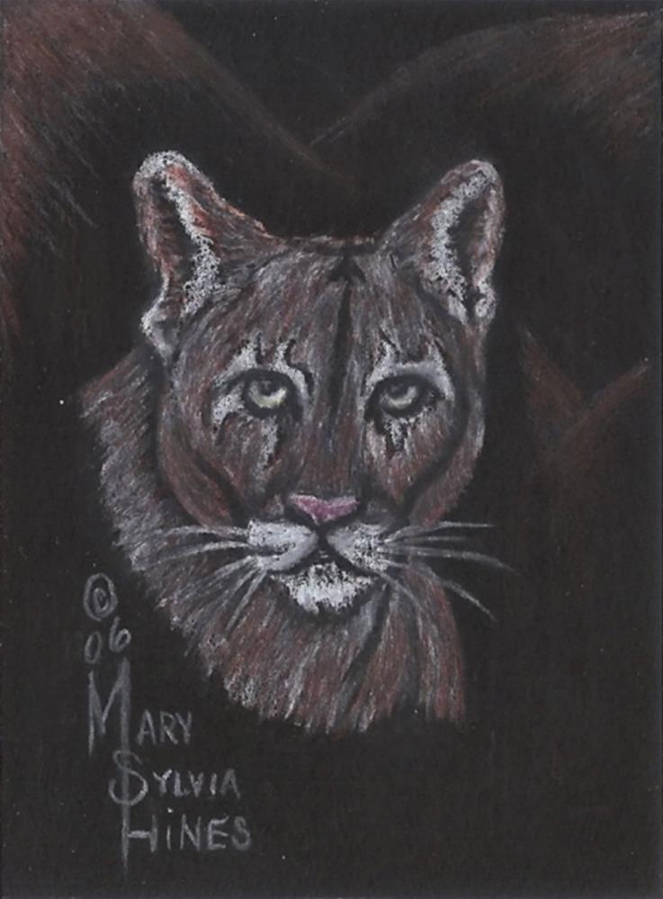 """ACEO Cougar 01"" original fine art by Mary Sylvia Hines"