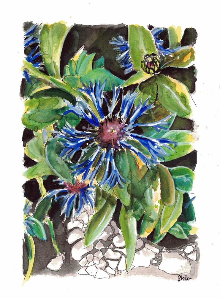 """3198 Cornflower blue"" original fine art by Dietmar Stiller"