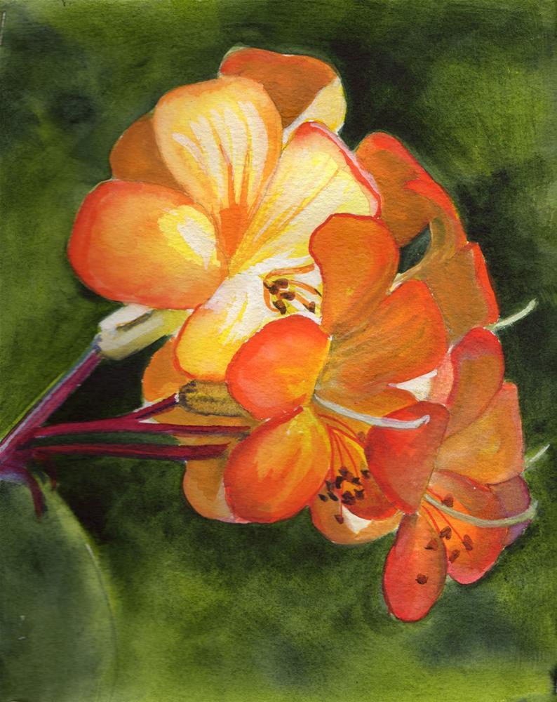 """Orange Flower"" original fine art by Bunny Griffeth"