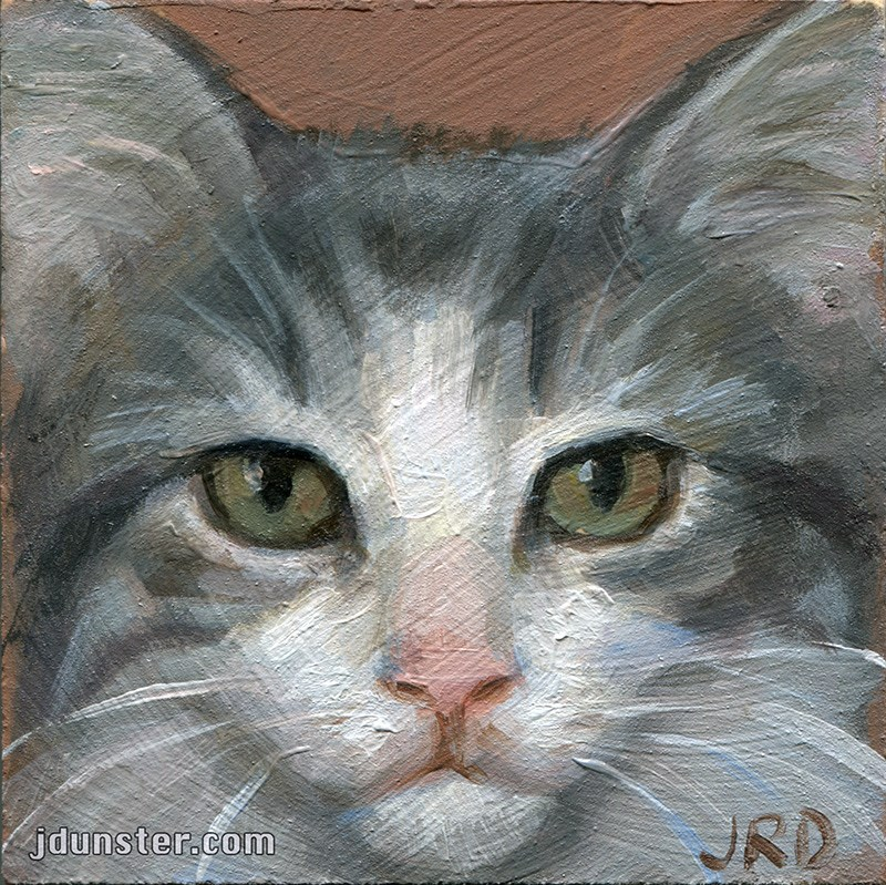 """Grey Kitten Head"" original fine art by J. Dunster"