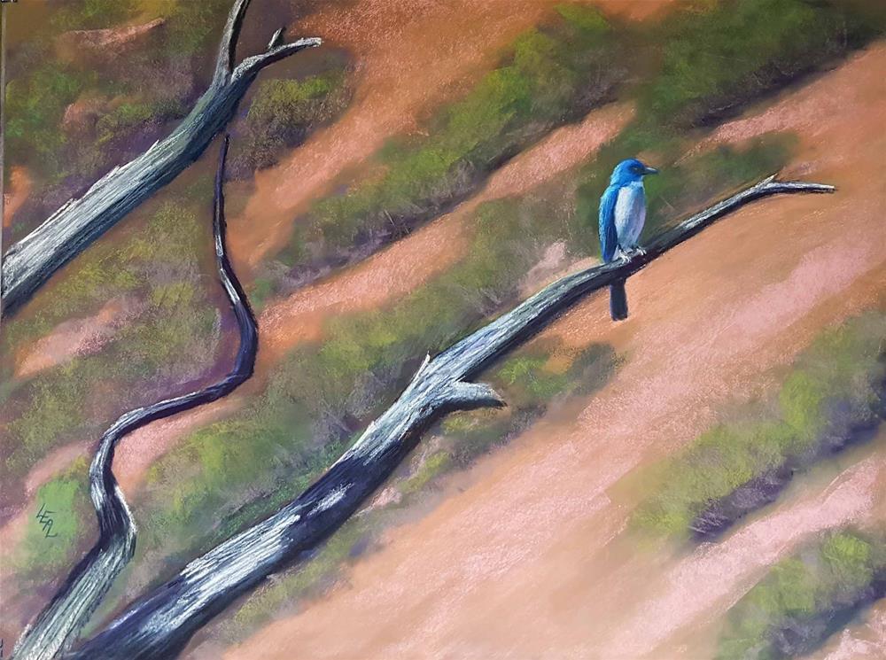 """Chisos Jay"" original fine art by Anna Lisa Leal"