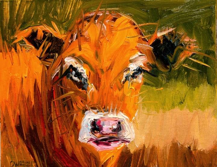 """ARTOUTWEST DIANE WHITEHEAD FINE ART OIL PAINTING COW ANIMAL ART"" original fine art by Diane Whitehead"
