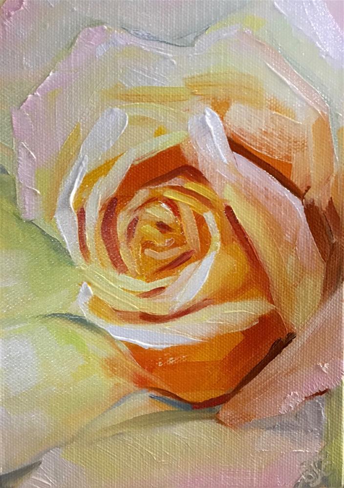 """A Rose of Many Colors"" original fine art by Bobbie Cook"