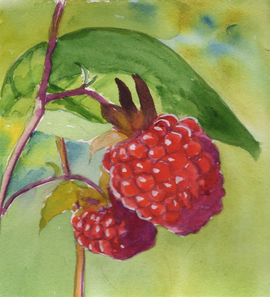 """Raspberries"" original fine art by Bunny Griffeth"