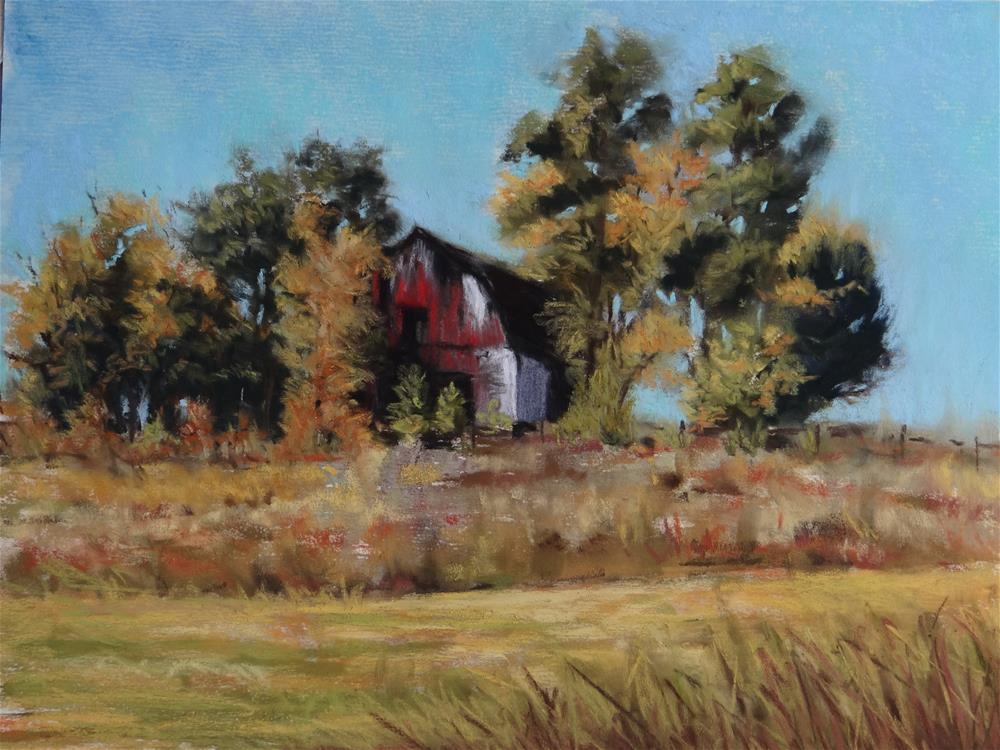 """Carolina Barn"" original fine art by Denise Beard"