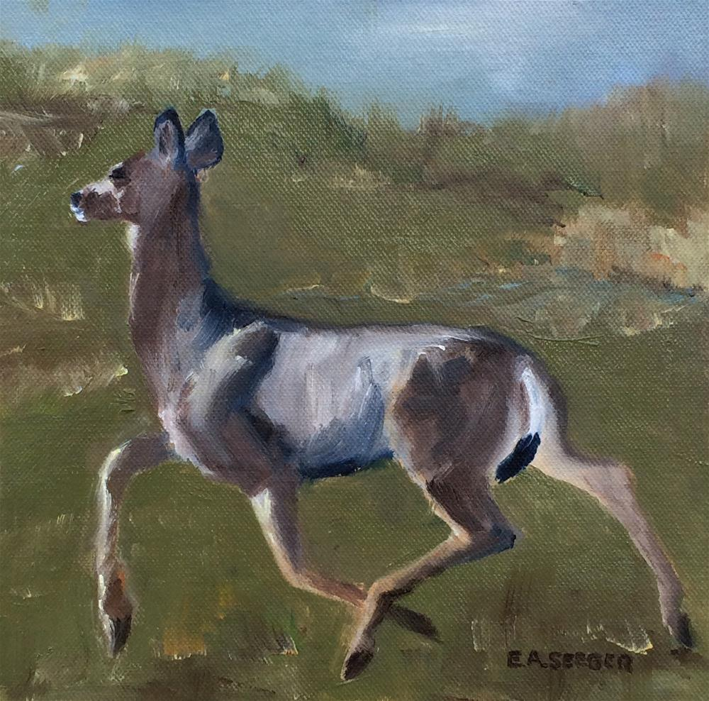 """Young Black Tailed Deer 30 in 30 Day 2"" original fine art by Elisabeth Seeger"