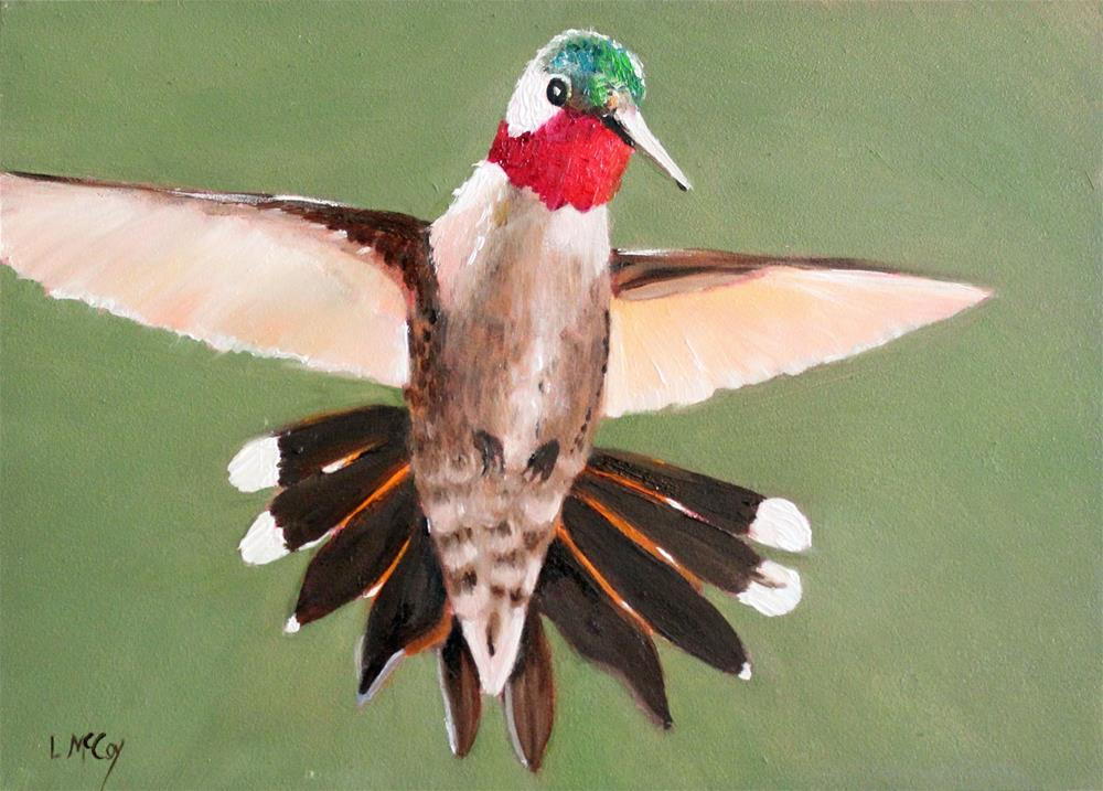 """Hover, Hummingbird Oil Painting, Linda McCoy"" original fine art by Linda McCoy"