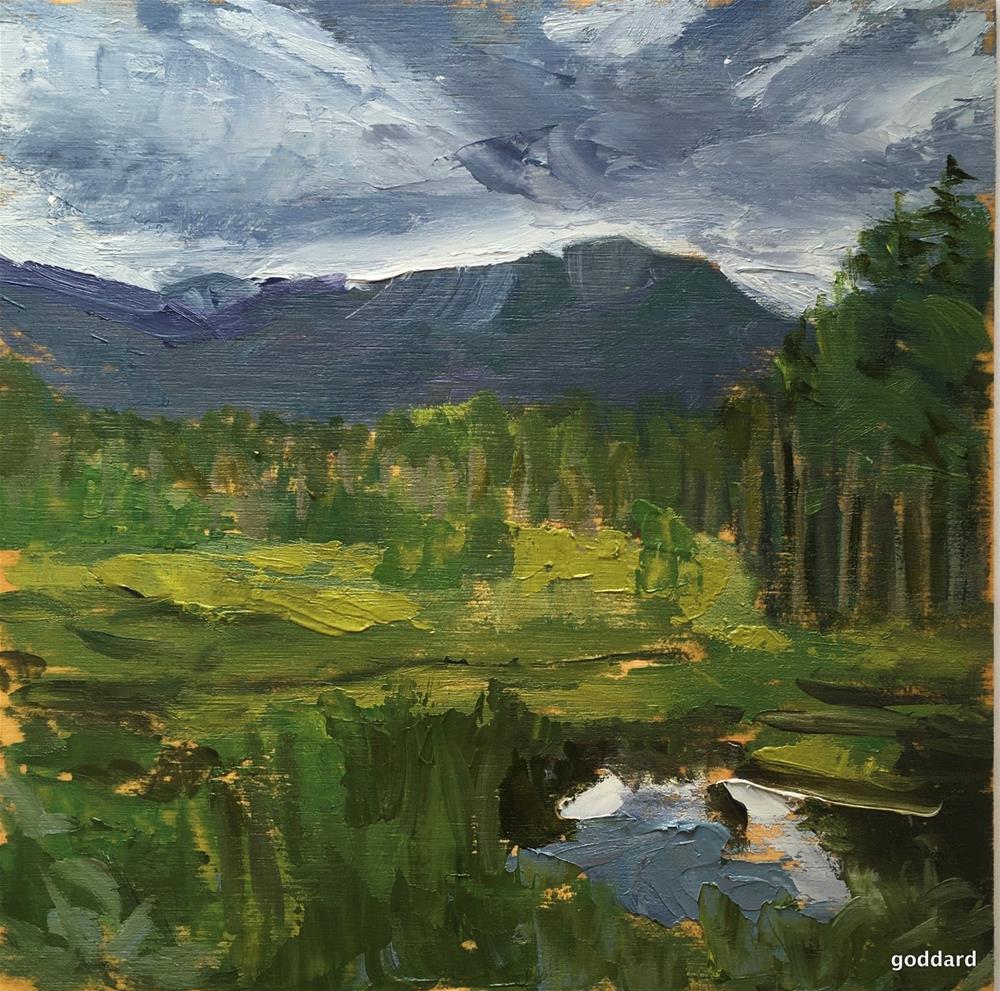 """A Time to Reflect"" original fine art by Shari Goddard Shambaugh"