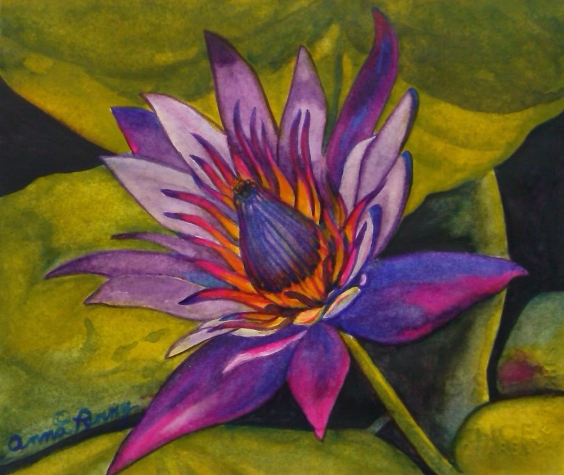 """Passion Lotus"" original fine art by Anna Penny"