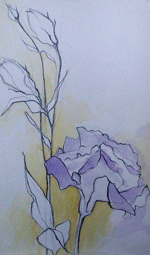 """flower sketch2"" original fine art by Brandi Bowman"