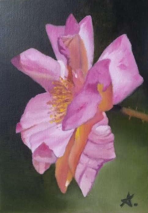 """Pink drop 86"" original fine art by Konstantia Karletsa"
