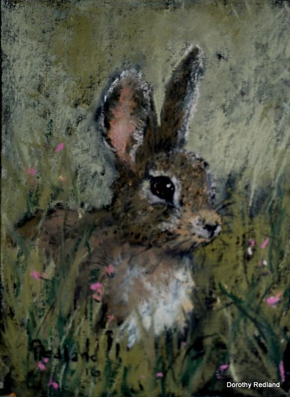 """Wide eyed and bushy tailed"" original fine art by Dorothy Redland"