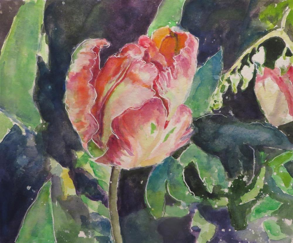 """813 Parrot Tulip"" original fine art by Diane Campion"