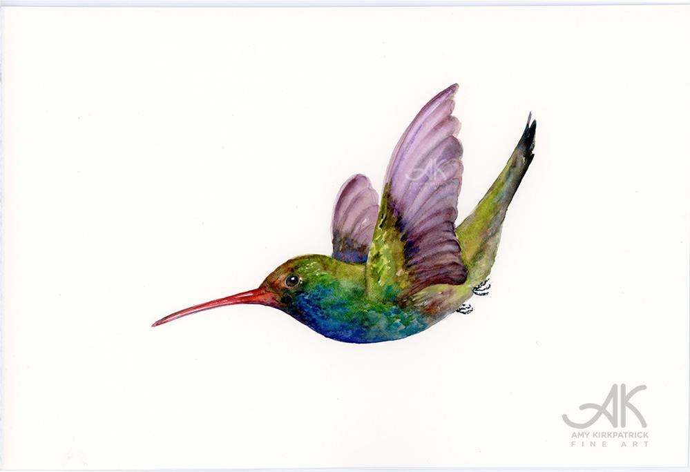 """SWOOPING BROAD-BILLED HUMMINGBIRD #0475"" original fine art by Amy Kirkpatrick"