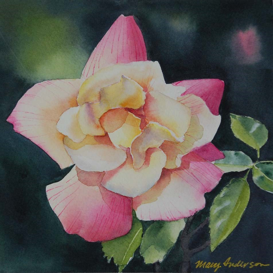 """""""Pink and Yellow Rose II"""" original fine art by Mary Anderson"""