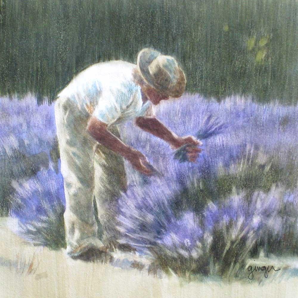 """""""Picking Lavender"""" original fine art by Ginger Pena"""