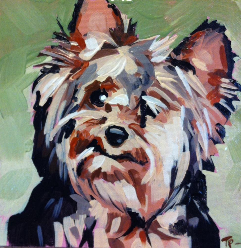 """Kramer"" original fine art by Teddi Parker"