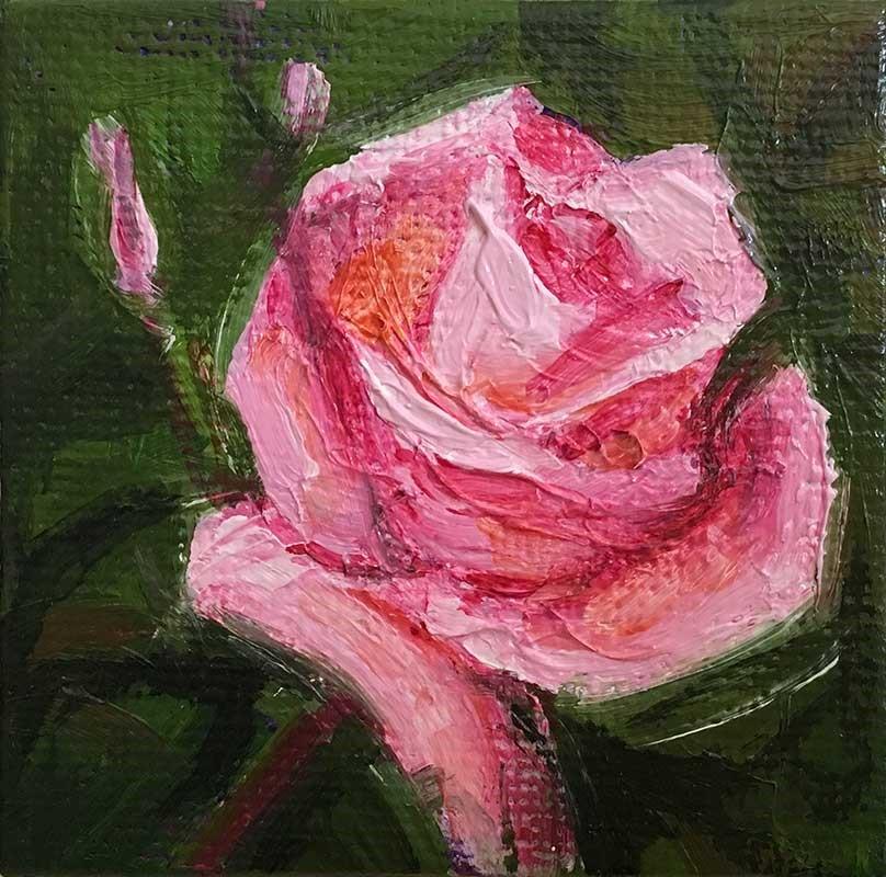 """""""Rose Pink miniature"""" original fine art by Kim Victoria"""