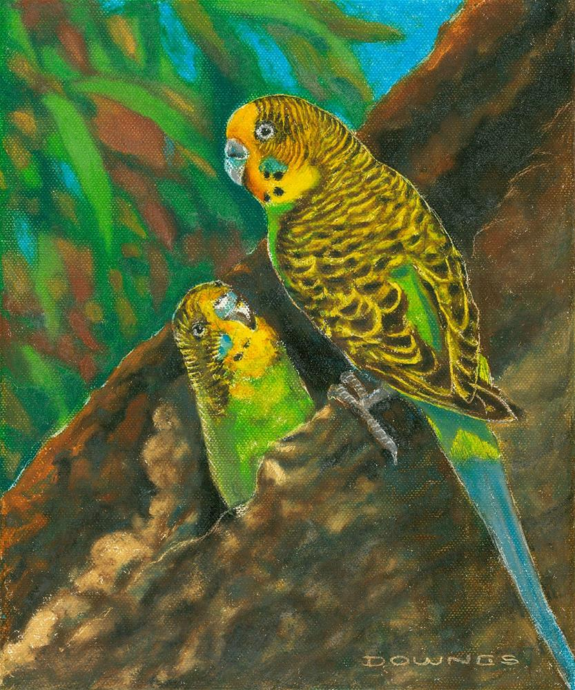 """330 BUDGERIGARS"" original fine art by Trevor Downes"