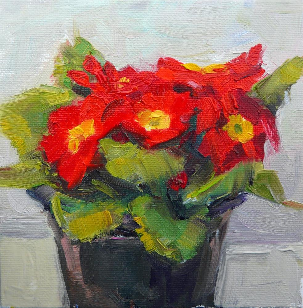 """Red Primrose,still life,oil on canvas,6x6,price$200"" original fine art by Joy Olney"