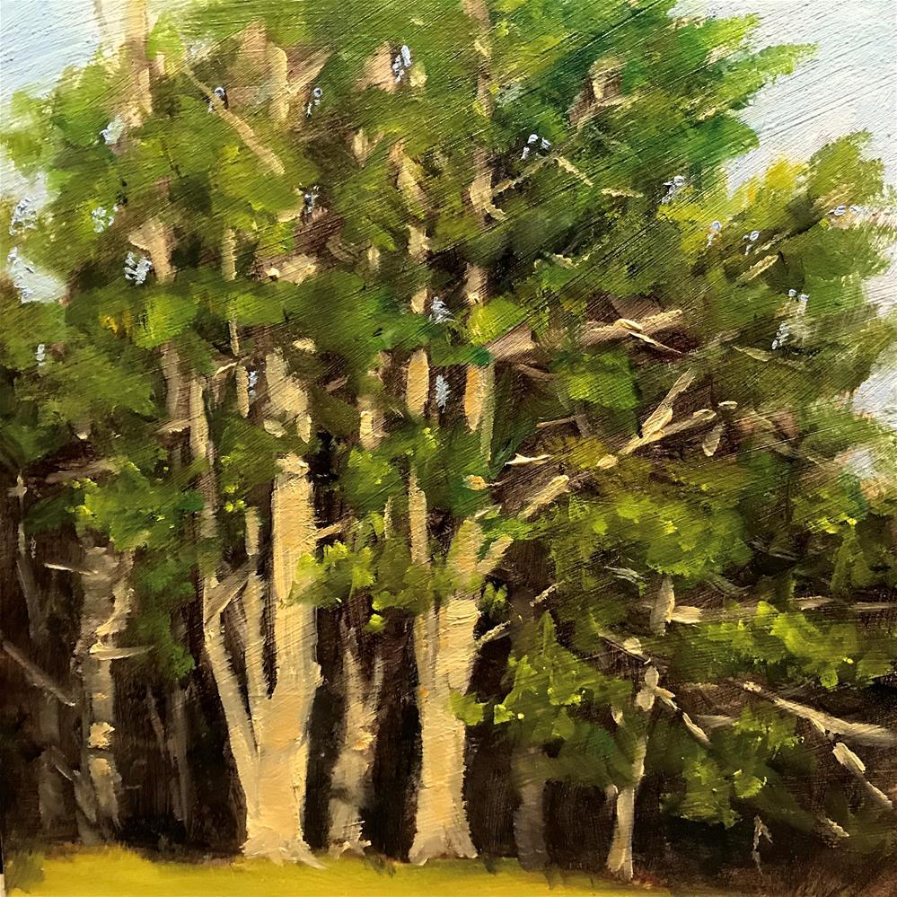 """sunlit pines"" original fine art by Betty Argiros"