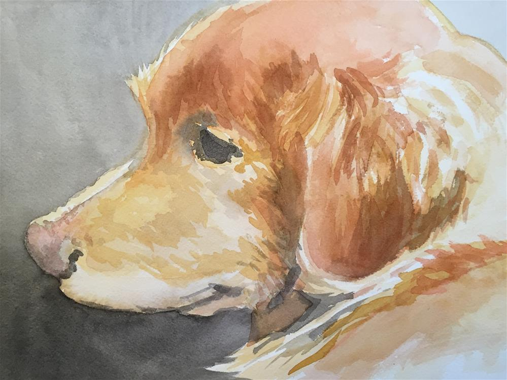 """golden"" original fine art by Cindy McDonough"