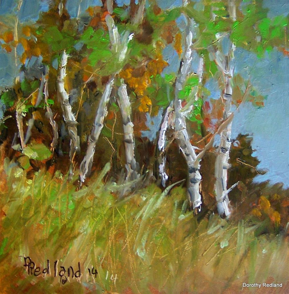 """Late summer Aspen"" original fine art by Dorothy Redland"