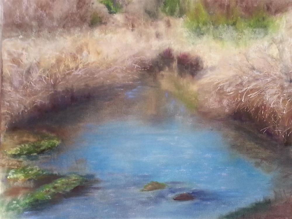 """4 Mile at Brushy Creek"" original fine art by Anna Lisa Leal"