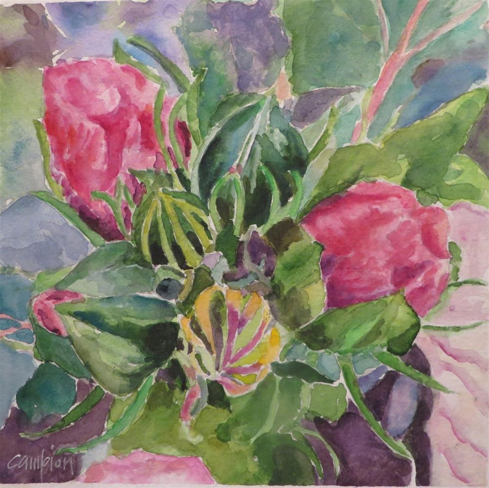 """819 Hibiscus Buds"" original fine art by Diane Campion"