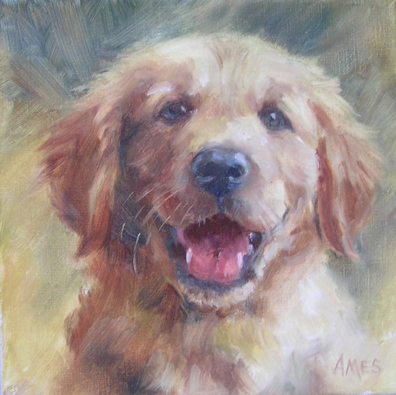 """Happy Golden"" original fine art by Debra Ames"