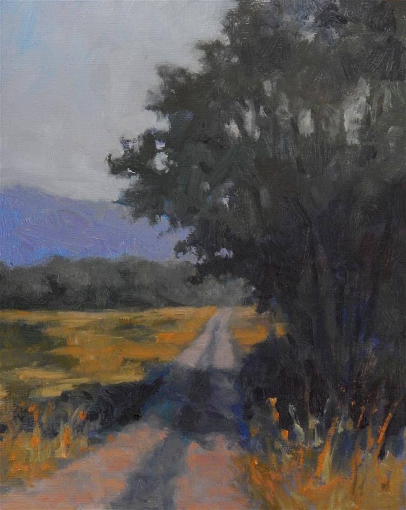 """""""Along the Road in Provence"""" original fine art by Lisa Kyle"""