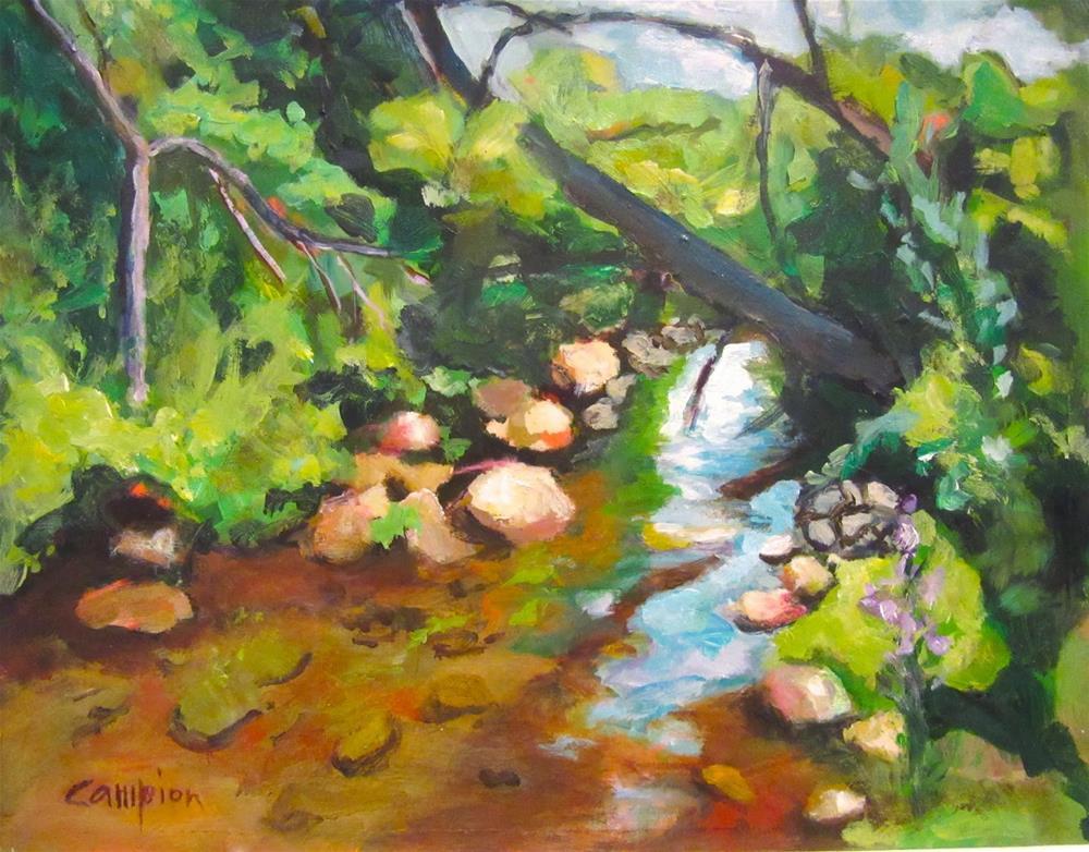 """499 Hideaway"" original fine art by Diane Campion"